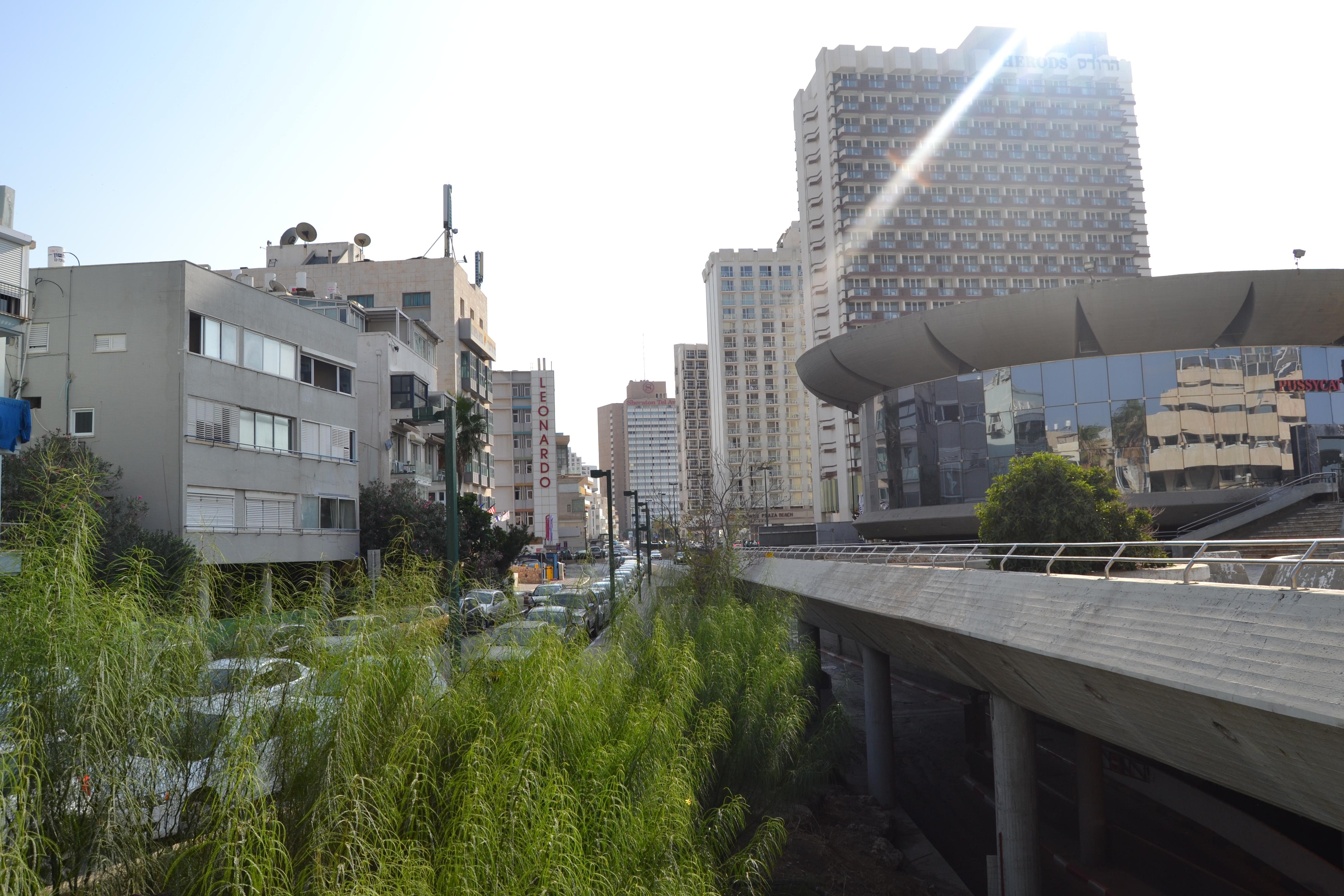 בין החוף לעיר. כיכר אתרים, תל אביב. צילום: שלי חפץ
