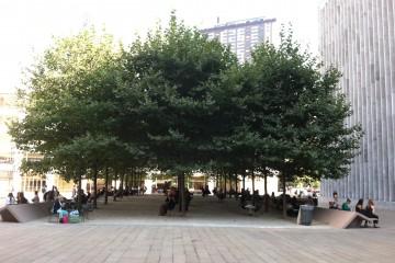 עצים במנהטן, לינקולן סנטר (צילום: DeepRoot, flickr)