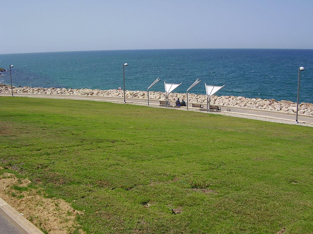 הרבה דשא, מעט צל. פארק מדרון יפו (צילום: avishai teicher, ויקיפדיה)