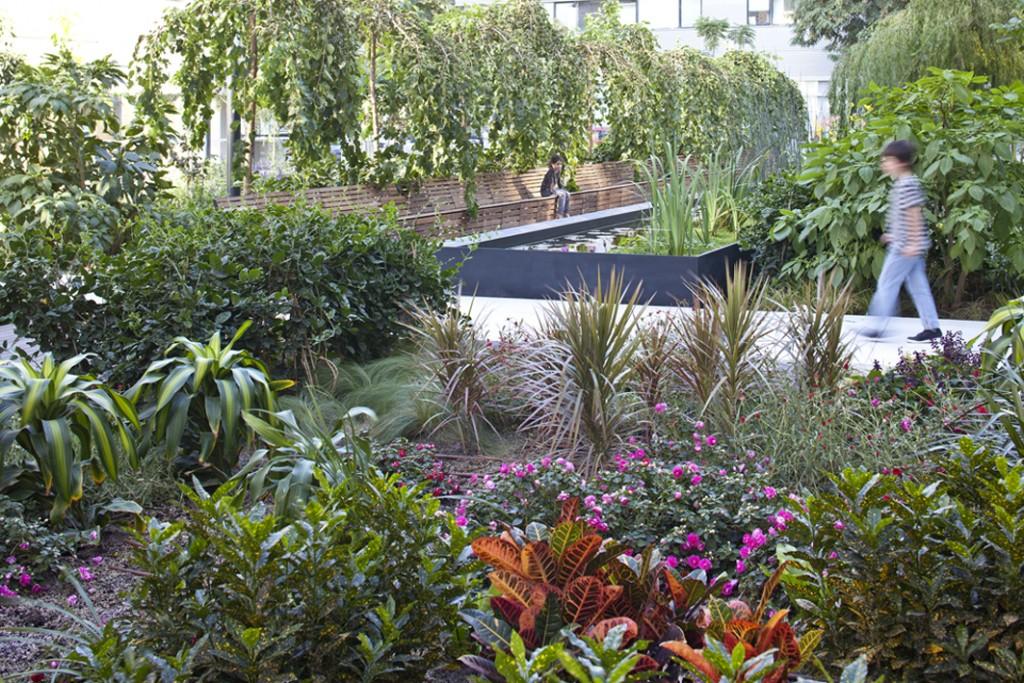 לא רק דשא אלא יצירת עושר נופי, הריחות, הצבעים, יוצרים חוויה ייחודית, דורש השקעה בתחזוקה (צילום: תמא- תכנון מרחב אורבני)