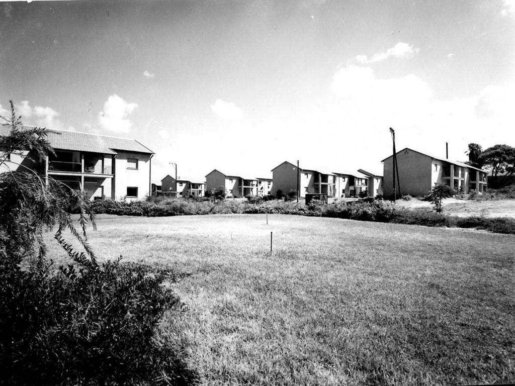 מבט על השטח הציבורי הפתוח. רמת אביב א', ללא גדרות בגבולות של מגרשי המגורים (צילום: מתוך פרסום של משרד הבינוי והשיכון, שנות ה-50).