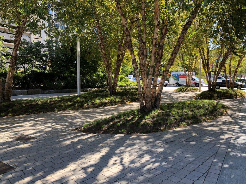 """פיתוח הנוף אקלקטי """"עושים יותר מידי"""", טוען בן יוסף, ראש המחלקה לתכנון עירוני בMIT (צילום: טלי חתוקה)"""