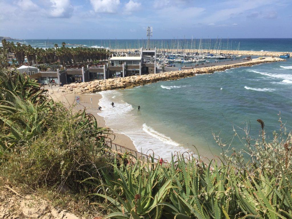 הפארק תוכנן לשמש כדרך פתוחה וכמעבר הדרגתי של החיבור בין קצה השטח הבנוי לים (צילום: בת אל אונגר)
