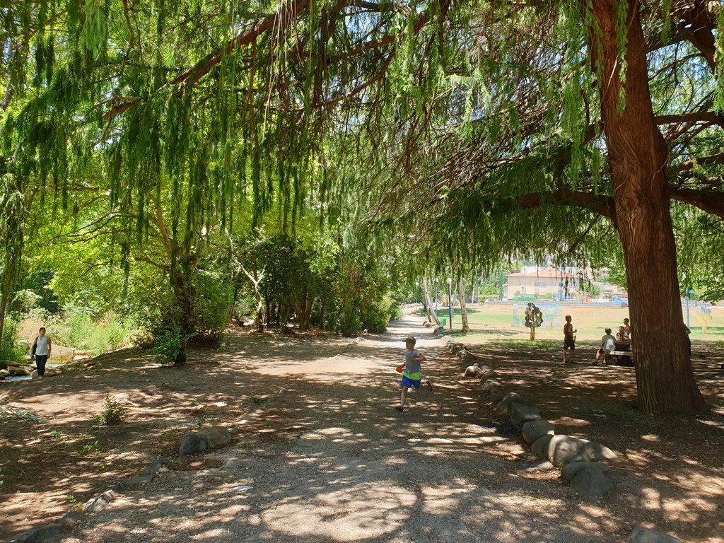פארק בקרית שמונה (צילום: טלי חתוקה)