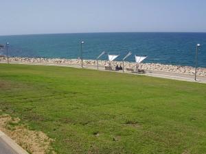 הרבה שמש, מעט צל. פארק מדרון יפו (צילום: avishai teicher, ויקיפדיה)