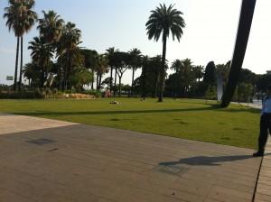 דשא, דשא, ועוד קצת דשא. הפארק החדש בניס, צרפת (צילום: הדס סערוני)
