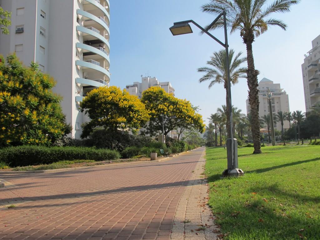 הפארק המרכזי בשכונת נאום אשלים, ראשון לציון, בתכנון כהנוביץ (צילום: המעבדה לעיצוב עירוני)