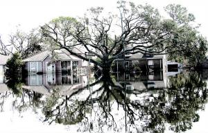 """(צילום: """"Hurricane Katrina Devastatingly Beautiful"""" by Gary Mark Smith)"""