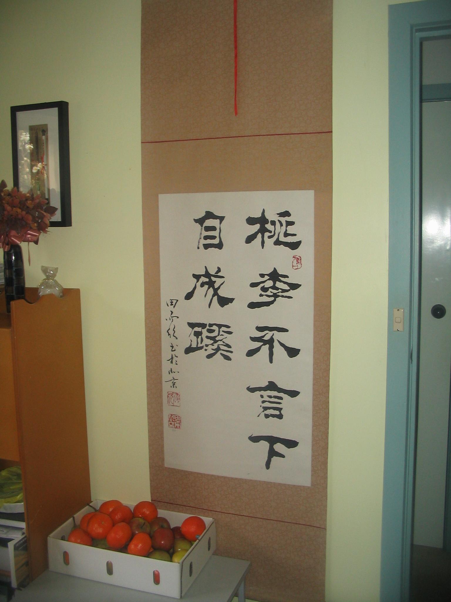 בתים של מהגרים מסין במלבורן. פנים הבית משקף זהות אתנית בעוד החזית החיצונית אינה משקפת זהות זו (צילום: איריס לוין)