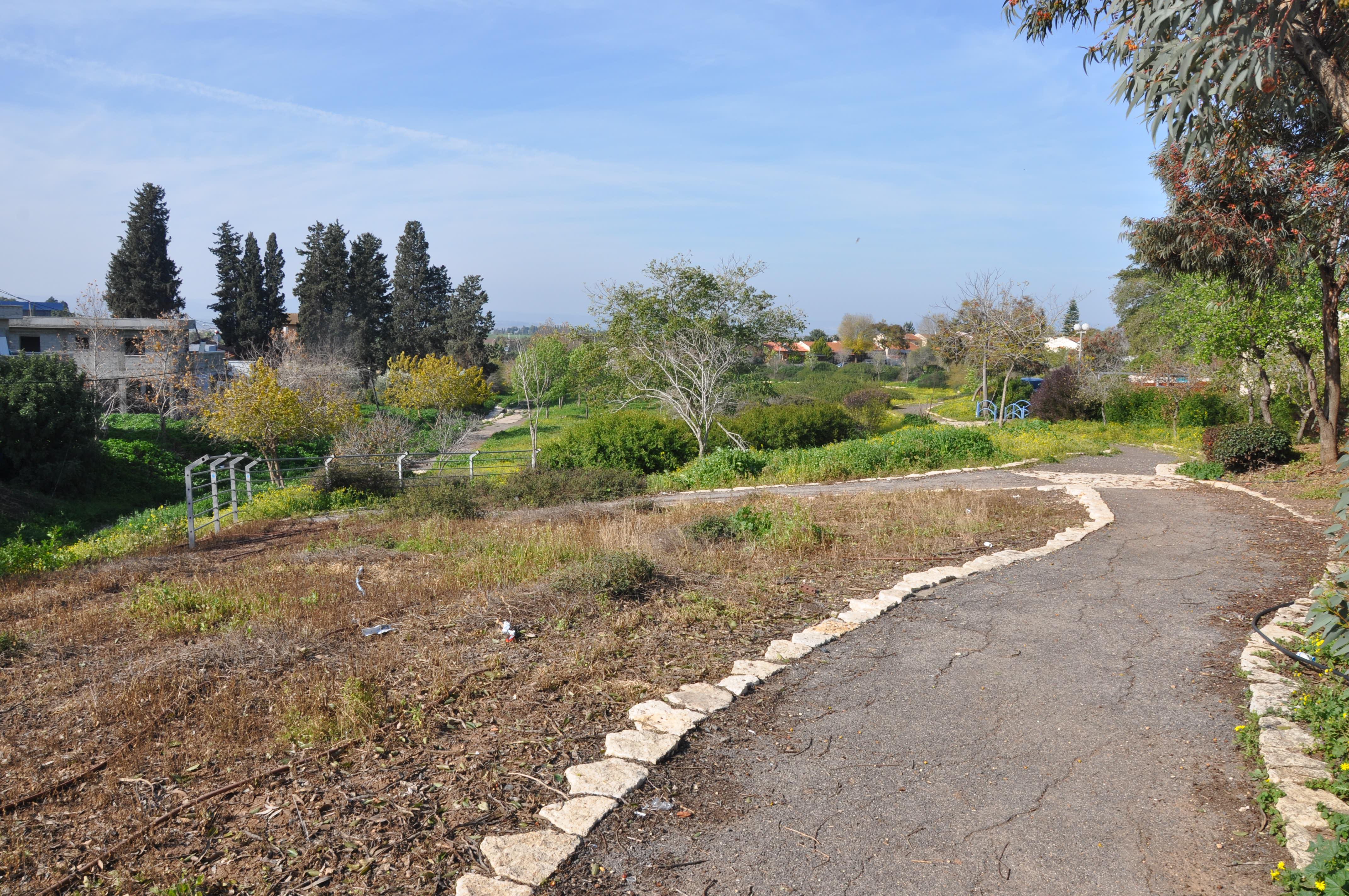 הממשק בין הטבע לעיר כהזדמנות לפיתוח נופי. פארק נחל המורה, עפולה (צילום: המעבדה לעיצוב עירוני)