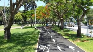 ציר ירוק בתל אביב רחוב גבעתי, תכנון גרינשטיין הר גיל