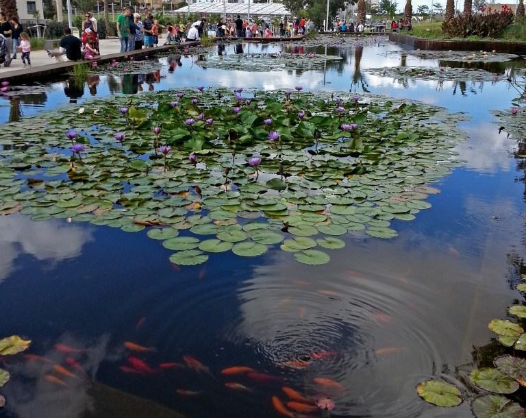 """""""מרחבים ציבוריים צריכים לתת לאנשים להיות בהם ולייצר פעילויות ספונטניות"""", גן בעברית, ראשון לציון, תכנון: ברוידא מעוז (צילום: MathKnight , ויקימדיה)"""
