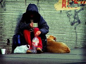 (צילום: Luis Felipe Salas, Flicker.com )
