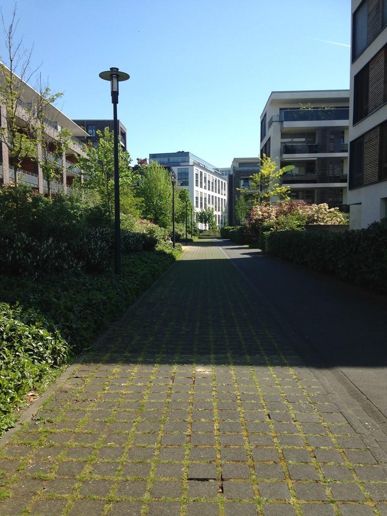 שביל בשכונה בין הבניינים (צילום: טלי חתוקה)