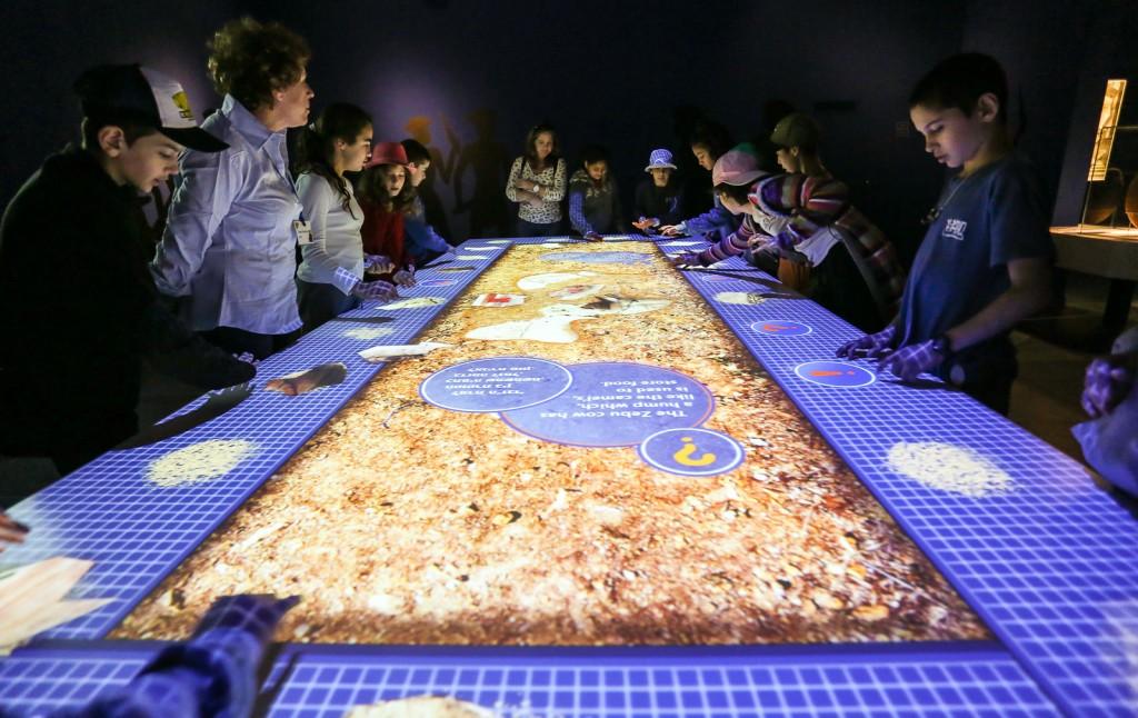 שולחן חכם תצוגת הקבע עולמם של הפלשתים, צילום יגאל סלבין