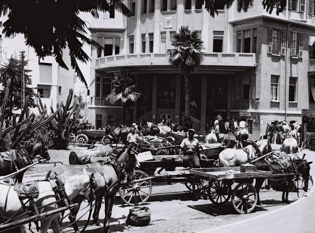 עגלונים מול בניין העירייה בביאליק, 1946 (צילום: PINN HANS, אוסף התצלומים הלאומי)